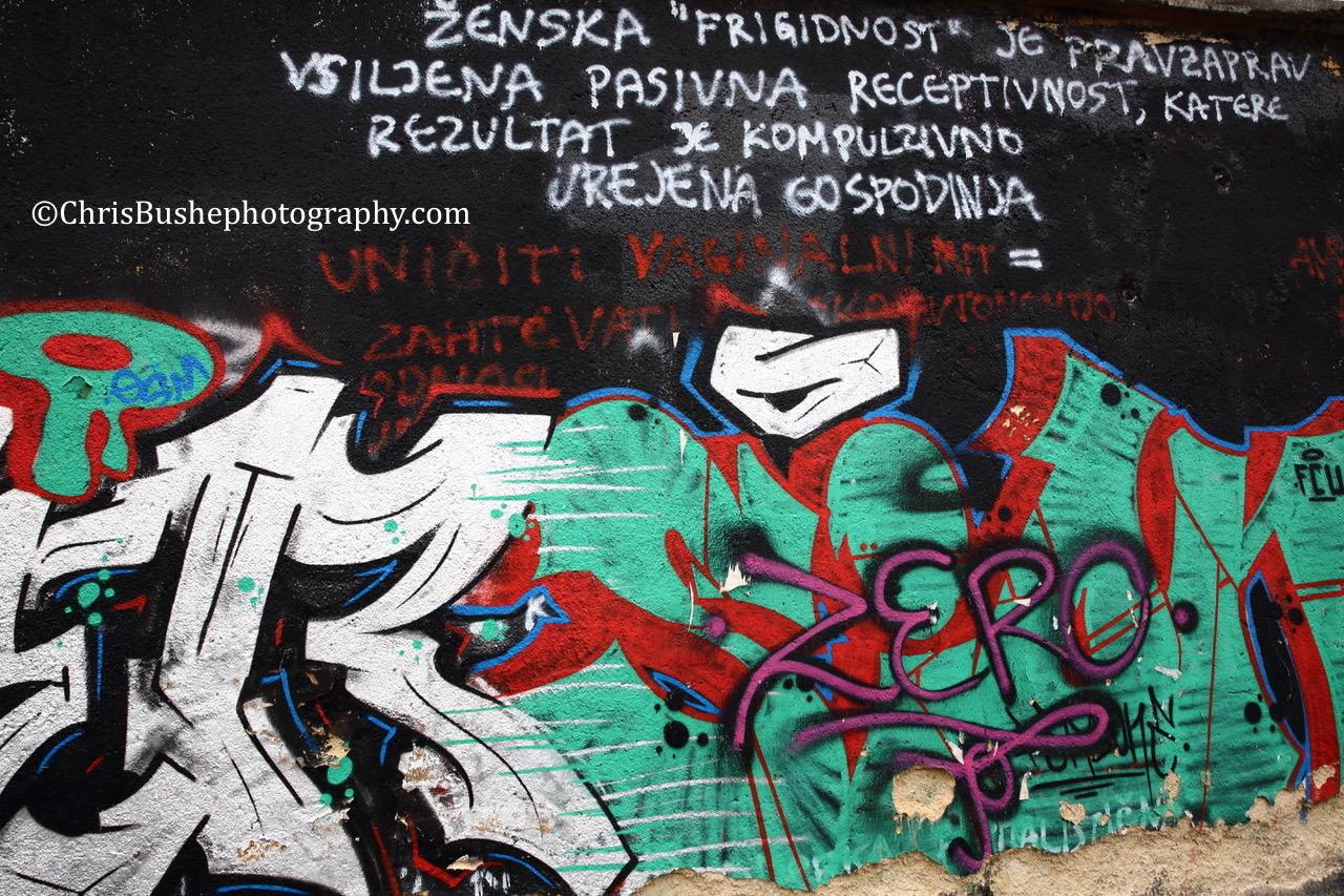 Ljubljana street art in Metalkova